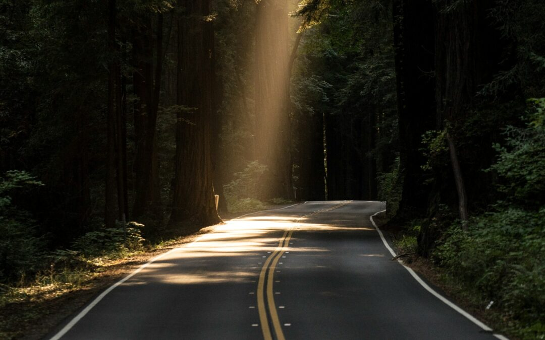 Talent Management Trends 2018: An Update from the Road