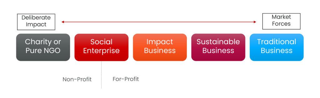 Figure 2 The Purpose-Driven Organization Literature Review Summary